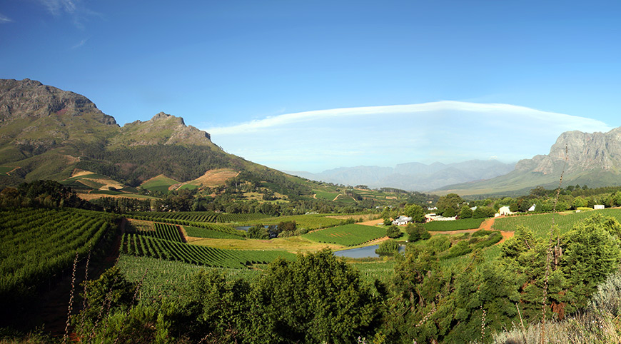 Views of the Stellenbosch Winelands