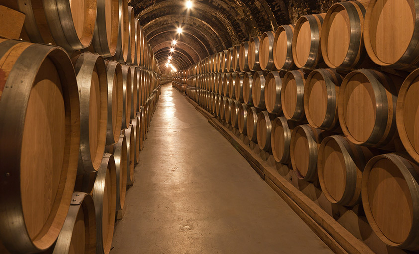 A tour of the wine cellar