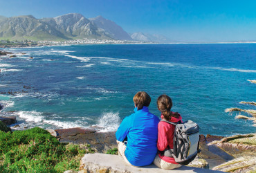 Whale Watching Tours Cape Town